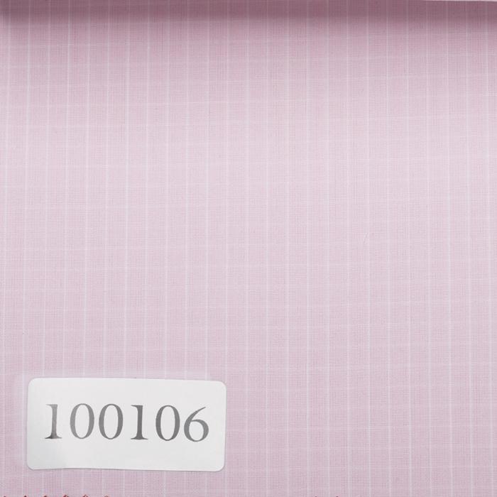100106
