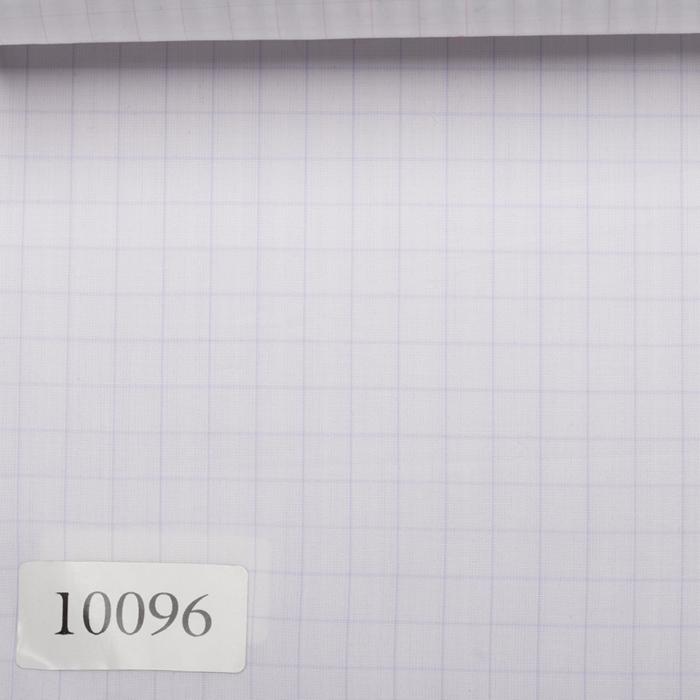 10096